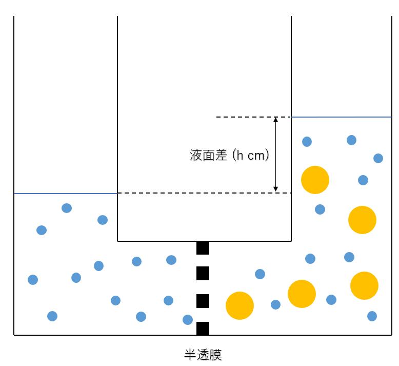 浸透圧とは(実験・公式) | 理系ラボ